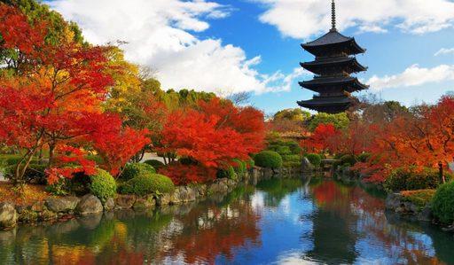 Du lịch mùa thu Nhật Bản - Đắm mình trong mùa lá đỏ